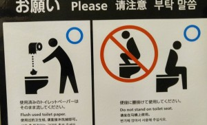 A warning sign depicts how to properly use a bidet.